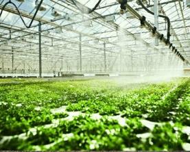 水肥一体化实施方案河南内黄育苗基地