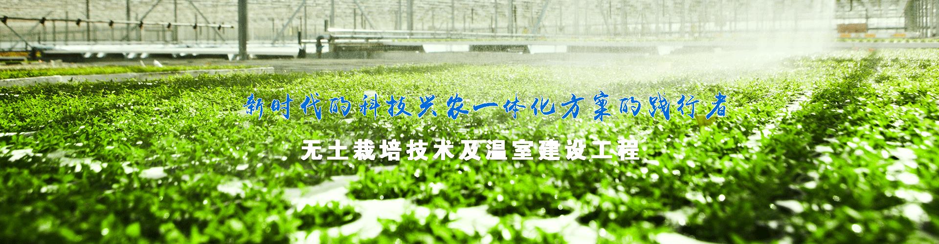 水肥一体化滴灌设备